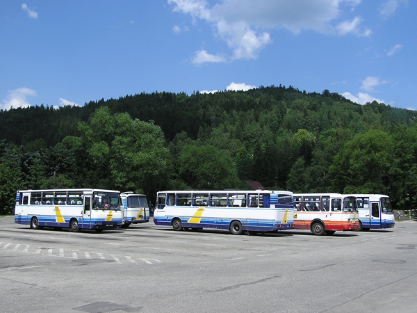 Лицензия на право пассажирских перевозок