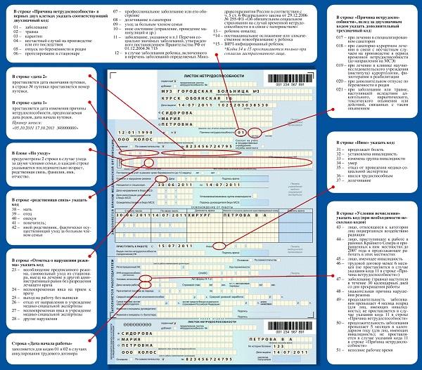 Что означает код 01 в больничном листе? Расшифровка кодов 02, 05, 11, 09, 04 и других - диагнозы и причины нетрудоспособности